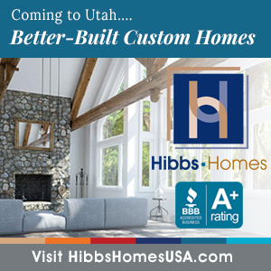 Hibbs Homes Digital Ad 3